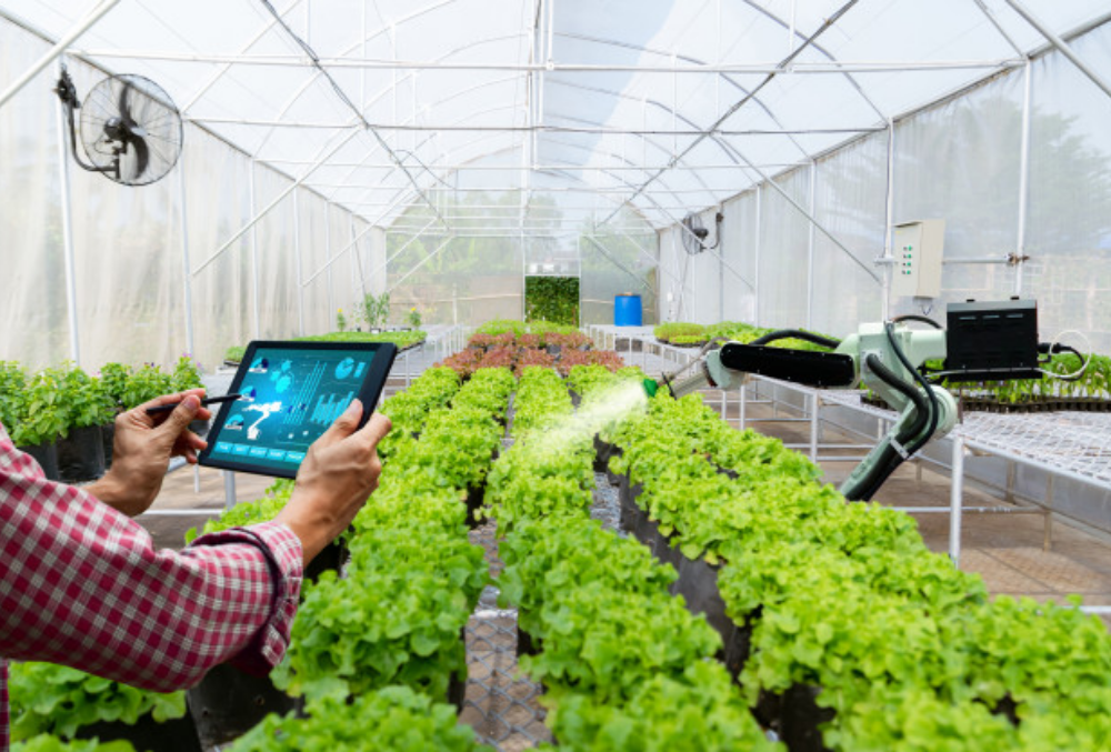 Use Cases of Internet of Things: Smart Orchards